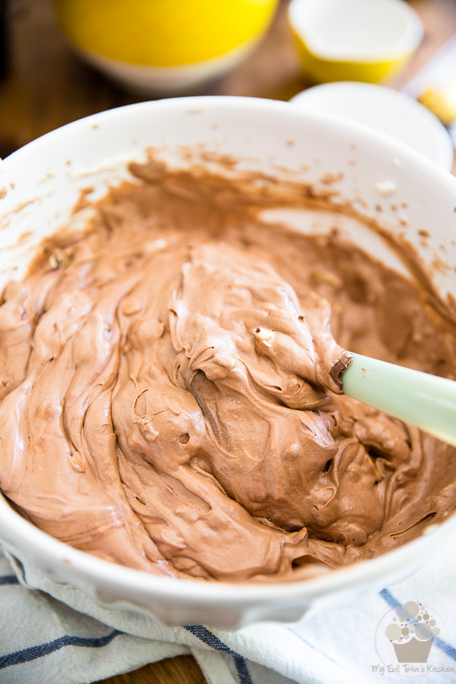 No Churn Ferrero Rocher Nutella Ice Cream by My Evil Twin's Kitchen | Step-by-step instructions on eviltwin.kitchen